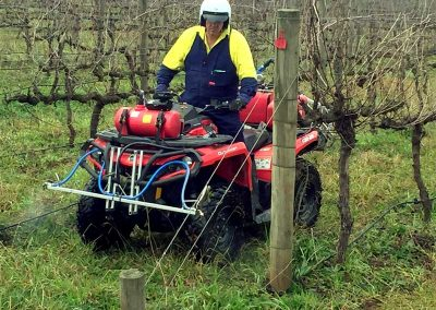 Vineyard spraying with the quad bike